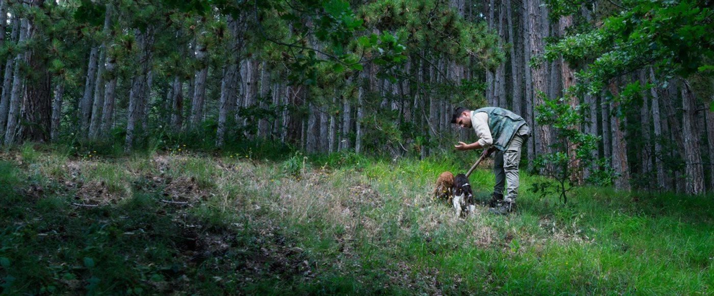 Urbani truffle hunting